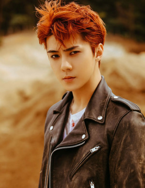 "EXO Sehun ""Don't Mess Up My Tempo"" teasers"